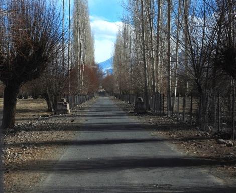 road to the bridge