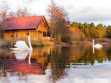 Log House Holidays: Eco-friendly luxury lakeside in the Cotswolds