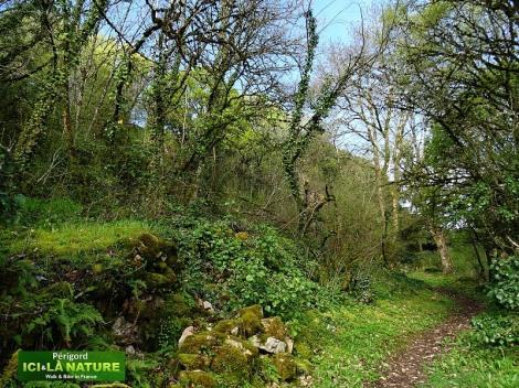 04-rural-landscape-perigord