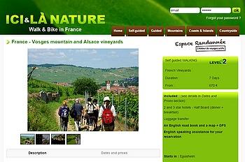 Walking Vosges mountain Alsace vineyards