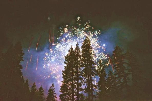 Sparkles Winter Trees Kimson Doan Unsplash