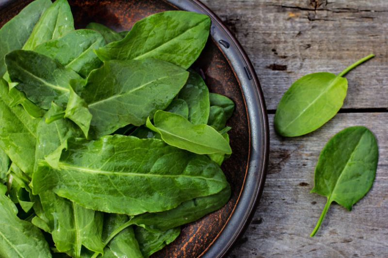Food As Medicine: Sorrel