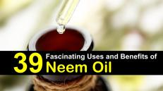 uses-and-benefits-of-neem-oil-t-img2