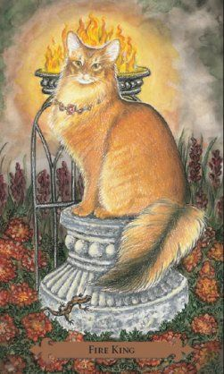 Tarot Guidance for Friday 22 June 2018: King of Wands —