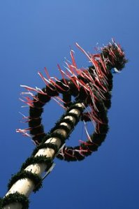 Beltane: May Poles and Dances