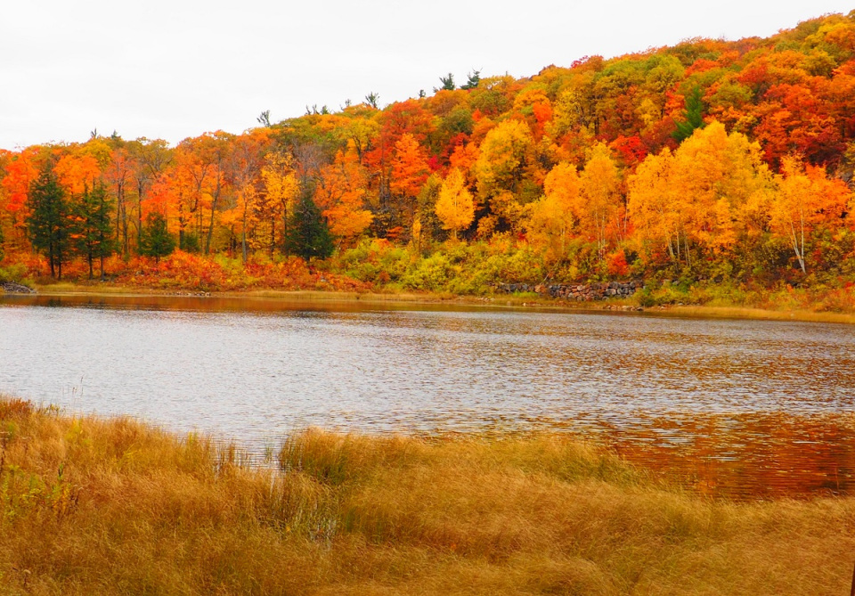 2019 Fall Rhapsody: A Superabundance of  Autumn Colours in Canada's National Capital Region, Ottawa and Gatineau, that no  City in the World can (Ever) Match — Simerg Photos – Photos, Images and Videos from Around the World — Wyndesong Collectibles