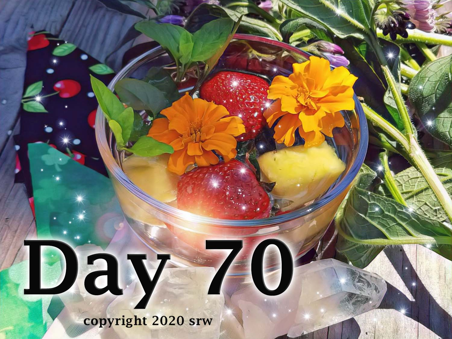 Day 70 – Magickal Herbal Waters