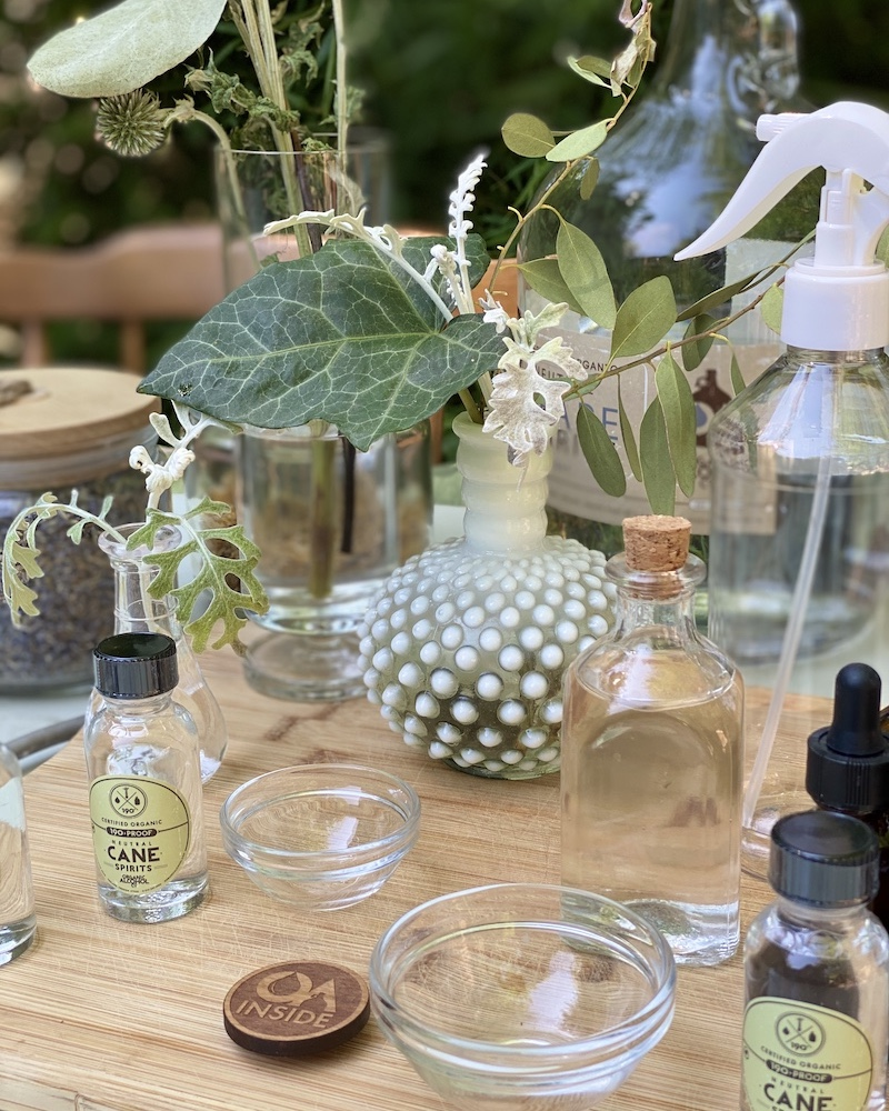 DIY RECIPE OF THE MONTH: ORGANIC BUG REPELLENT