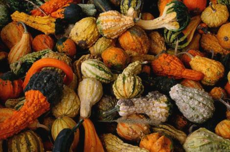 Autumn Equinox, Mea'n Fo'mhair, Mabon Customs and Practices