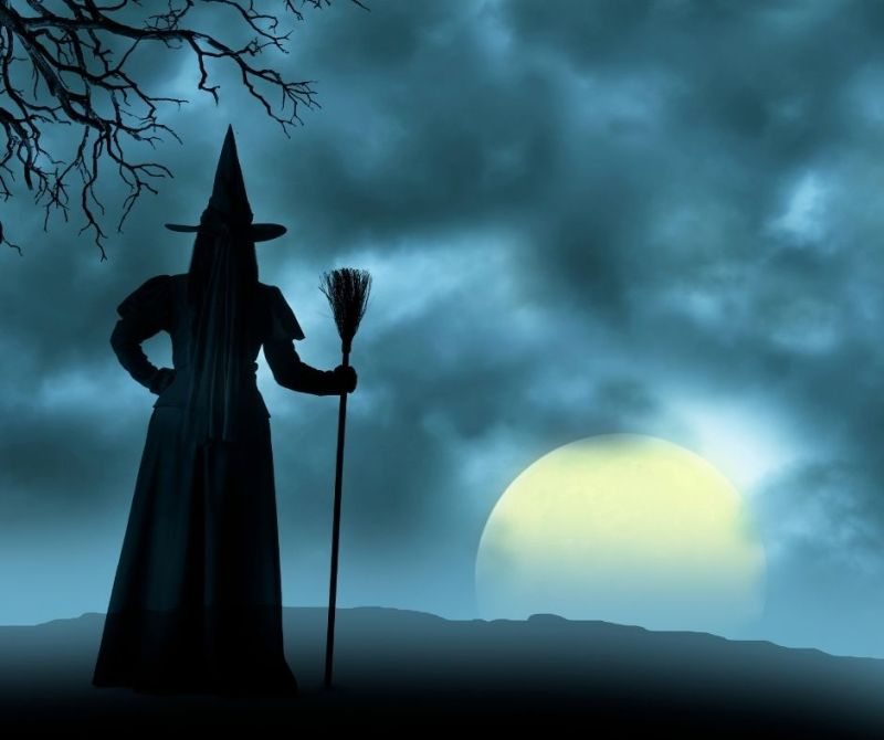 3 Purification Rituals for the Samhain Full Moon — Tess Whitehurst