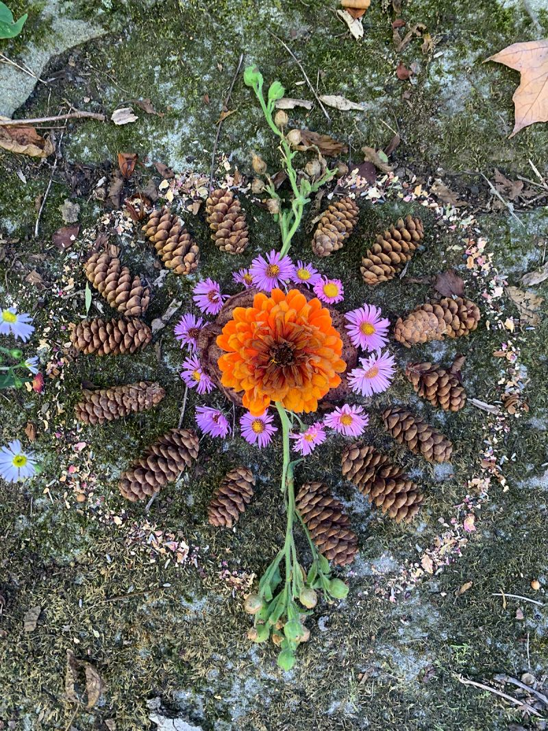 Nature Mandalas for Inner Work, Rituals, and Blessings — The Druid's Garden
