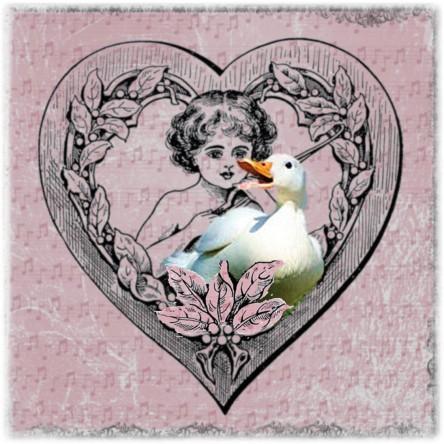 Duck Cupid Quellie pink