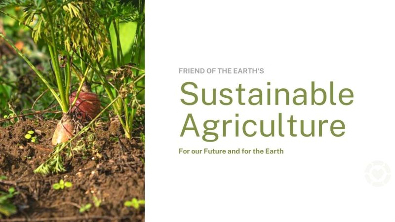Sustainable Agriculture for our Future and for the Earth — ecogreenlove